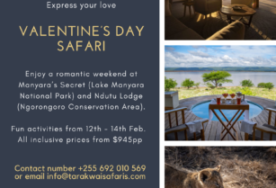 February-valentines-migration-special
