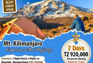 BOOM BOOM EASTER OFFERS – OPTION ONE – 7 DAYS MT KILIMANJARO (BLUE LOTUS TRAVEL & TOURS)