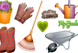 30% OFF FUMIGATION, JANITORIAL & GARDENING SERVICES