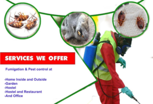ARE YOU LOOKING FOR A PROFESSIONAL FUMIGATION COMPANY FOR YOUR HOUSE, GARDEN, SCHOOLS AND HOSTEL, HOTEL AND RESTAURANT AND OFFICE? MGOBASA PEST SOLUTION IS YOUR BEST ANSWER.