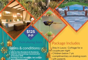 THE RETREAT AT NGORONGORO SPECIAL FESTIVAL OFFER!!