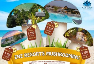 PLAN YOUR SABA SABA HOLIDAY (ZNZ DISCOUNTED PRICES) ~ BLUE LOTUS TRAVEL & TOURS