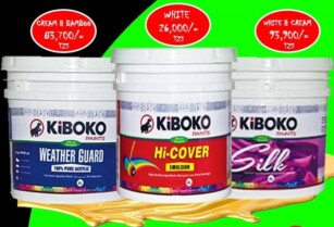 Quality Paints available at discounted price – Hurry hurry