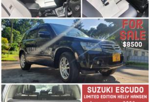 Suzuki 2008 Luxury edition for sale