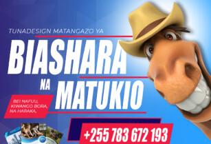 Professional-flyer-design-services